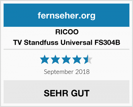 RICOO TV Standfuss Universal FS304B Test