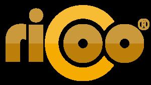 RICOO Fernseher-Zubehör